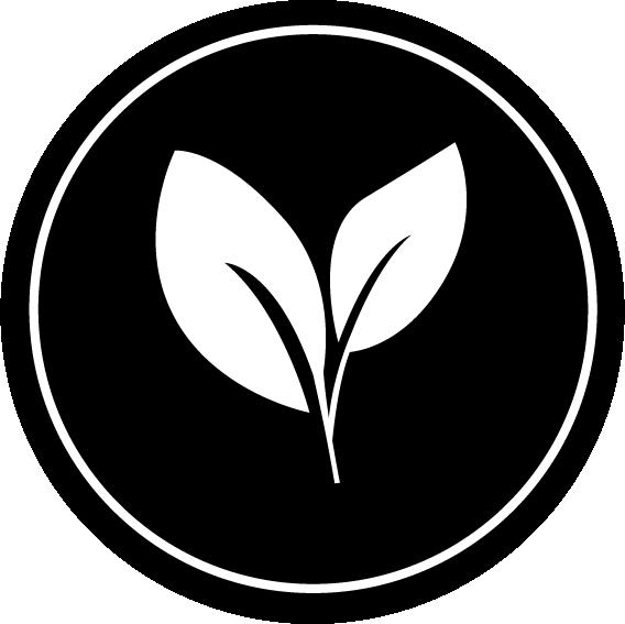 Benzin-Additiv für umweltfreundlichere Verbrennung